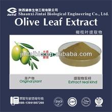 oleuropein olive powder 20% 40% olive leaf extract in bulk