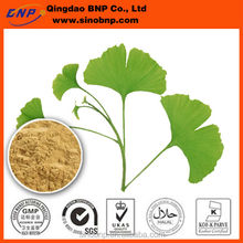 Sells Natural High Quality Ginkgo Biloba Leaf Extract Flavone Glycosides from Qingdao BNP