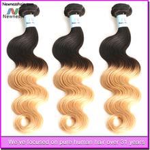 Wholesale Unprocessed Human Ombre Hair Weaves Brazlian/Malaysian/Peruvian Virgin Hair Extention
