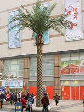 Artificial Date palmeras, Date Palm precios
