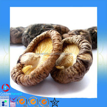 Edible Fungi Mushrooms ,Dried Shiitake Mushroom, Dried Mushrooms