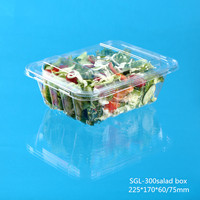 disposable plastic salad container with cover