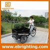 front box two wheel cargo bike electric canada