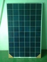 Best price A Grade solar panel 250W Trina Solar Poly 250W Panel