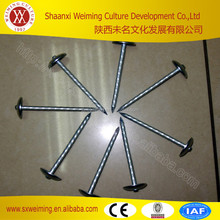 stainless steel concrete nail //concrete steel nails best price supplier made in china