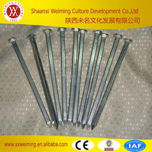 hot sale !!steel concrete natural long nails