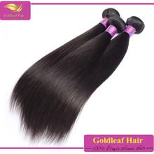 Gold supplier wholesale 5A grade 100% unprocessed virgin brazillian hair