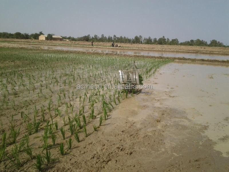 2015 HOT China ACME manual rice transplanter price