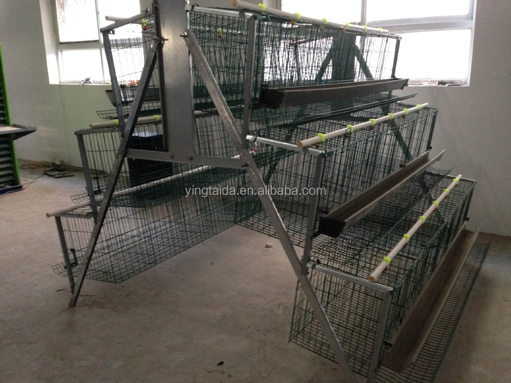 A type Chicken Layer Cages hot dipped galvnized