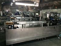 High speed blister packaging machine DPP-260H with Omron/Siemens Servo Motor