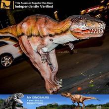 MY Dino-Baby T-rex realistic dinosaur costume
