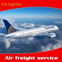China to South American professional air cargo shipping--Mina