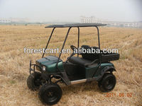 Buggy Price, Electric Cargo Golf Cart, OEM Provided