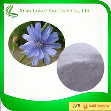 Manufacturer Supply Inulin 90%/Chicory Root Extract Powder