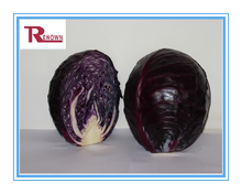 Red Cabbage Extract E60,Brassica Oleraea,Red Cabbage Extract powder
