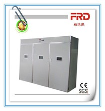FRD-6336 Special price Top selling reptile/poultry egg incubator/hatcher for sale