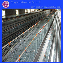 Units A Type Chicken Cages for Sale
