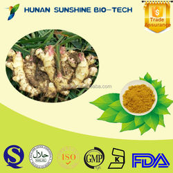 Health Food Powder Form And Herbal Extract Brownish Yellow Ginger Extract Powder