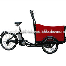Electric assisted cargo trike