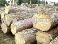 sell russian round logs pine & spruce