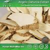 China Manufacturer Dong Quai Root Extract Powder,Dong Quai Root Powder Extract