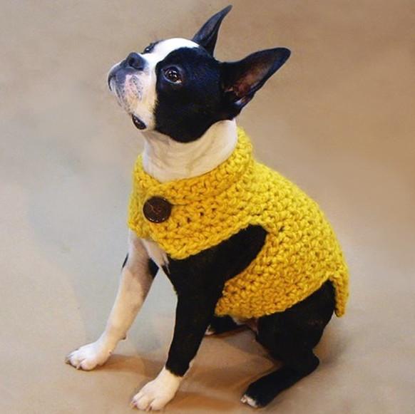 Cute Button Crochet Dog Clothes Hand Knit Dog Sweater Buy Crochet