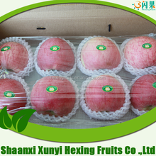 Pome Fruit Product Type and Red Delicious Variety red fuji apples