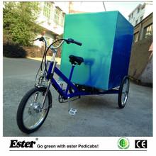 Electric Truck Cargo Trike