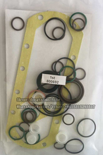 13599-0220(800692) Diesel Fuel Injection Pump repair kit