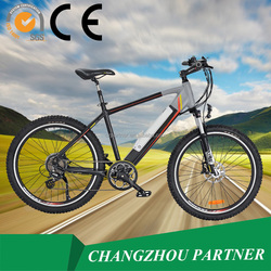 EN15194 Chinese manufacturer direct sale electric dirt bike(PNT-EB-07)