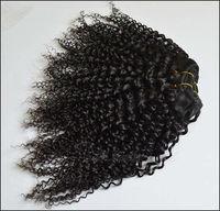 virgin Brazilian kinky curly weave hair