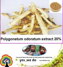 Polygonatum odoratum extract