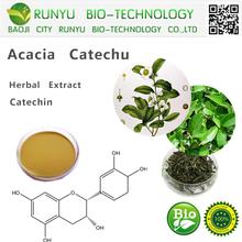Green tea extract catechin herbal extract type acacia catechu
