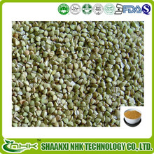Natural Tartary Buckwheat Extract / Rutin 80%