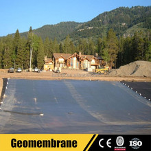 Farm Waterproof Material HDPE Geomembrane Pond Liner for Sale