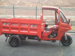 China 200cc Motorized Trike for cargo