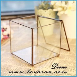 clear glass vase candle holder drawn terrarium decoration