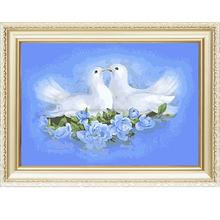 Doves design menglei oil painting by numbers on canvas