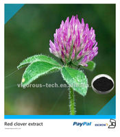 100% Natural Red clover extract Isoflavones powder