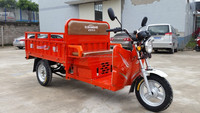 2014 hot selling 3 wheel electric motorcycle 1000w