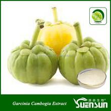 GMP factory High quality garcinia cambogia fruit extract