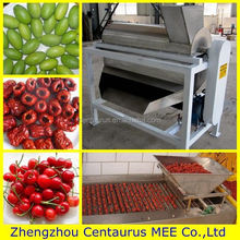 Low price fresh olive pit remove machine with fast delivery