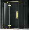 shower screen with golden sus304 frames