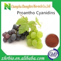 100% Pure Natural Grape Seed Extract Proanthocyanidins 95%