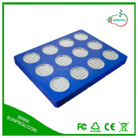 Elly-755W Apollo LED Grow Light Apollo 12 252*3W LED Grow Light Full Spectrum for Green House, Hydroponic System 3 Year Warranty
