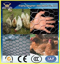 heavy duty chicken wire used for poultry and bird