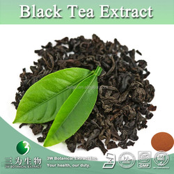 High Quality Black Tea Extract, Black Tea Extract Powder Theaflavine 40%