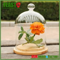 2015 New style glass bell jar Hot selling glass dome jar High borosilicate clear glass bell jar with wooden base