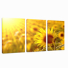 Sunflower Canvas Art For Wall/Dropship China Art Supplies/Wall Hanging Picture On Canvas