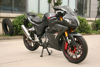 Good sale 250cc, 300cc Racing motorcycle for sale, bike SKYLINE